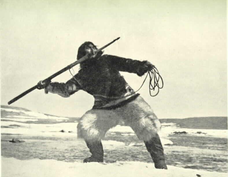 nanook of the north essay